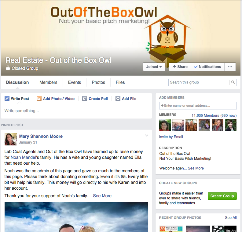 Out of the Box Owl